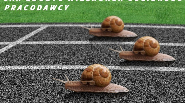 Snails race on sports track